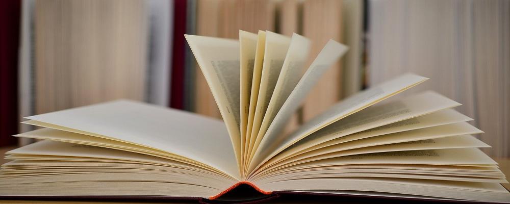 Adjudicación adquisición de paquetes de papel para Grupo Correos
