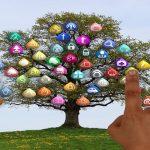 Licitación pública País Vasco redes sociales