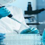 Licitación pública Madrid análisis hemocultivos y cultivo micobacterias