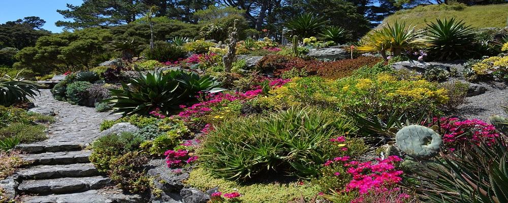 Licitaci n madrid para restauraci n jard n bot nico mnh for Centro de eventos jardin botanico