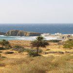 Licitación promoción del destino turístico de Almería en Alemania