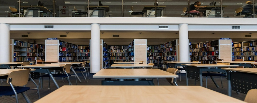 Licitación atención al público en las bibliotecas públicas de Pamplona, Navarra