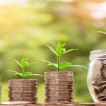 Ayudas creación, desarrollo y promoción comercial de franquicias extremeñas