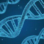 Licitación secuenciación de muestras de hepatocarcinoma para CIBER