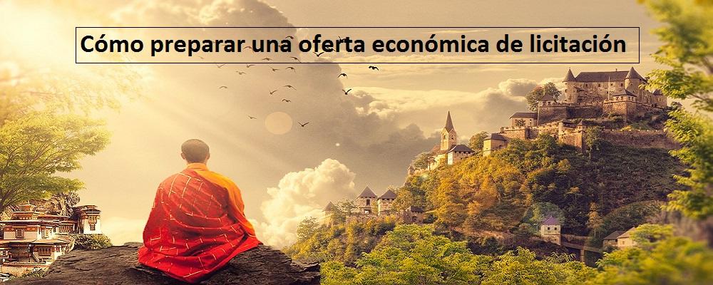 preparar una oferta económica de licitación