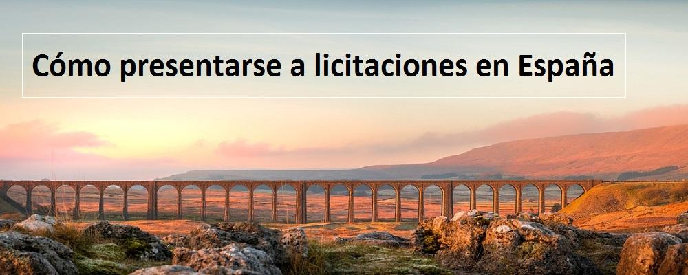 Como presentarse a licitaciones en España