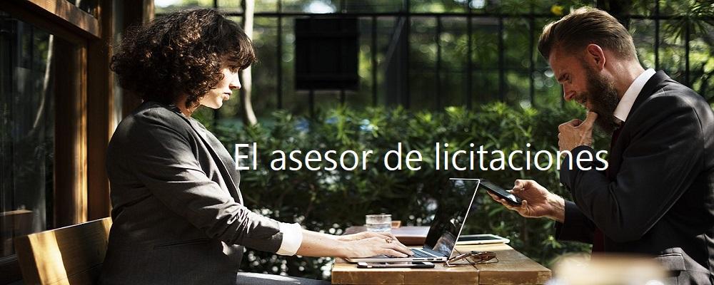Asesor de Licitaciones