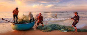 Licitación pescados frescos de lonja para establecimientos de Paradores