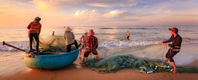Licitación suministro de pescado y marisco en centros de Bienestar Social de Ciudad Real