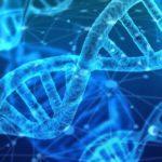 """Licitación suministro plataforma """"High-Troughput"""" para análisis genómico de células, Madrid"""