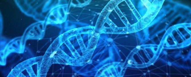 Licitación servei de ultraseqüenciació relacionats amb epigenòmica per IDIBAPS, Barcelona