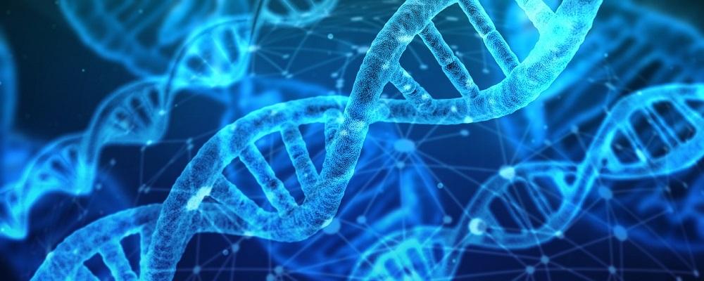 Licitación servicios genómica para la FIBAO, Granada