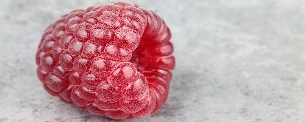 Licitación suministro de frutas y hortalizas a centros escolares de Andalucía