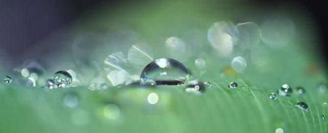 Licitación suministro de agua mineral natural para el Servicio Canario de la Salud