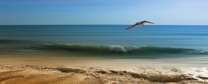 Adjudicación agencia de publicidad para campañas de turismo de la D.P. de Cádiz