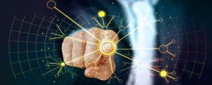 Licitación servicios de competencias digitales para el MJUS