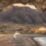 Licitación promoción turística del destino Andalucía en el ámbito de Alemania 2019