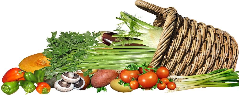 Licitación suministro alimentos y materias primas a las escuelas del Patronato de Alicante