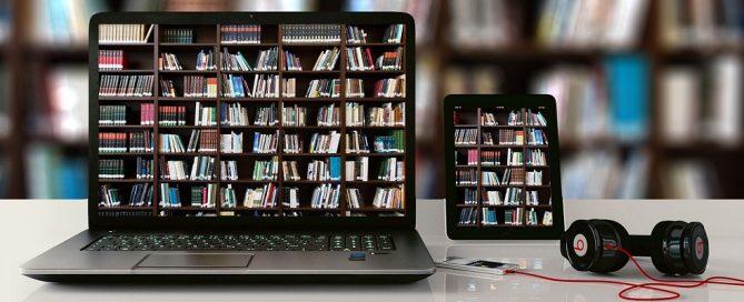 Adjudicación servicio impartición cursos de inglés online, País Vasco