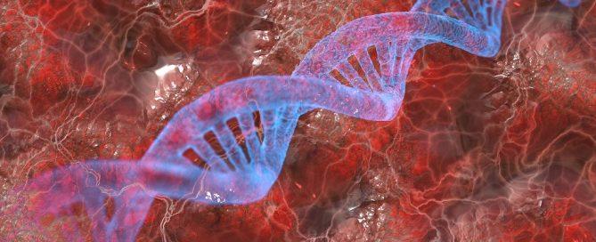 Licitación reactius i equipament per detecció d'anomalies de còpia d'ADN en Barcelona