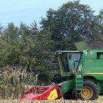 Licitación asesoramiento pymes agroindustriales en transformación digital en Ourense