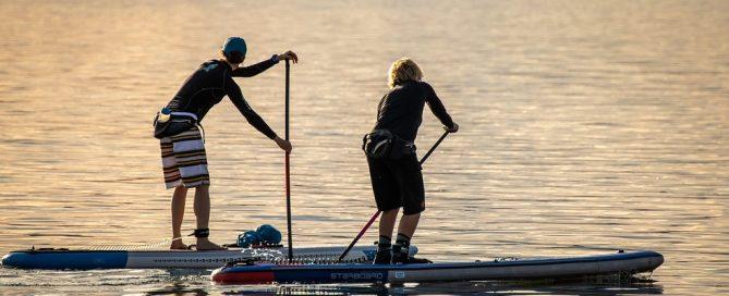 Licitación servicios deportivos de circuito natación y waterpolo para Diputación de Sevilla