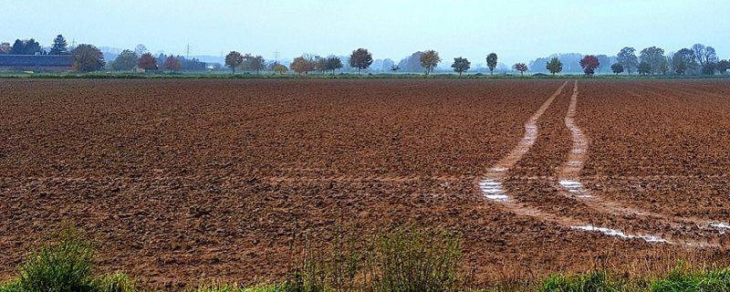 Licitación suministro contenedores para Residuos Sólidos Urbanos de Castilla La Mancha