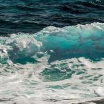 Licitación promoción de la Costa Blanca en la feria FITUR 2020
