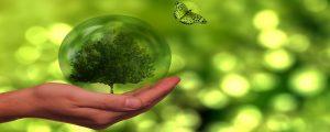 Adjudicación comunicación y sensibilización sobre acción por el clima en Vitoria-Gasteiz